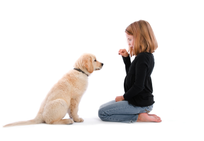 Dog Training in Massachusetts for families and kids