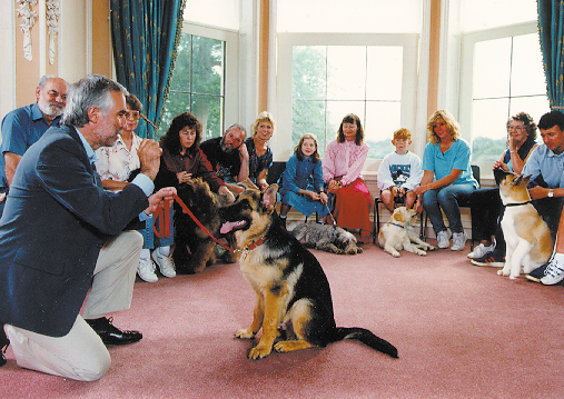 Puppy Classes | Dog Star Daily