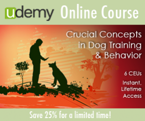 Save 25% on Ian's Online Course: Crucial Concepts in Dog Training & Behavior