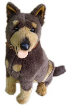 Kelpie, Puppy , Chirag Patel, Puppy Diary, Dog Star Daily