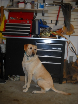 Bridget poses in front of a tool box