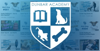 Dunbar Academy is now on YouTube