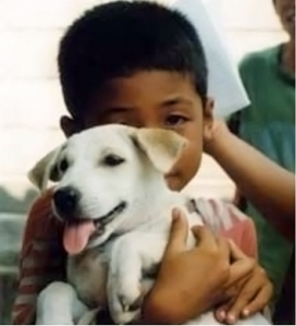 Thai boy and dog.