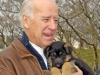 ap_biden_dog_018214_main.jpg