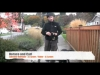 Embedded thumbnail for (Part 2) David Hogan - David the Dog Trainer