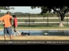Embedded thumbnail for (Part 2) Shizuka Kawahara - Universal Dog Training