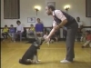 Embedded thumbnail for Lure Reward Review - SIRIUS Puppy Training Classic