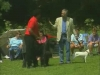 Embedded thumbnail for Sit as a Reprimand - Training Dogs with Dunbar