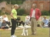 Embedded thumbnail for Praising While Walking  - Dog Training for Children