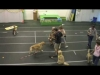 Embedded thumbnail for (Part 2) Bridget Brady – Narnia Pet Behavior and Training