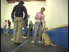 Embedded thumbnail for Meet, Greet, Repeat – SIRIUS Adult Dog Training