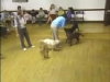 Embedded thumbnail for Improving Recall - SIRIUS Puppy Training Classic