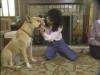 Embedded thumbnail for Handling & Examining - SIRIUS Puppy Training Classic