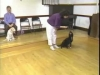 Embedded thumbnail for Luring for Children - SIRIUS Puppy Training Classic