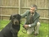 Embedded thumbnail for Adult Rottweiler - Training the Companion Dog 1 – Socialization & Training