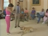 Embedded thumbnail for Proofing Jake's Down Stay - Training the Companion Dog 4 – Recalls & Stays