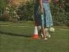 Embedded thumbnail for On-Leash Heeling - Training the Companion Dog 3 – Walking & Heeling;l