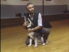 Embedded thumbnail for Puppy Biting - SIRIUS Puppy Training Classic