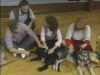 Embedded thumbnail for Pass the Puppy - SIRIUS Puppy Training Classic