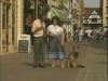 Embedded thumbnail for Walk About Town - Training the Companion Dog 3 – Walking & Heeling