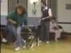 Embedded thumbnail for Housetraining - SIRIUS Puppy Training Classic