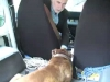 Embedded thumbnail for Sit For Chauffeur