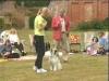 Embedded thumbnail for Praising Stays - Dog Training for Children