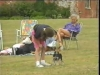 Embedded thumbnail for Come & Sit - Dog Training for Children