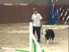 Embedded thumbnail for AGILITY Slowing Down - Dog Training for Children