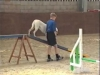 Embedded thumbnail for AGILITY Contact Points - Dog Training for Children