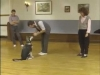 Embedded thumbnail for Heeling Tips - SIRIUS Puppy Training Classic
