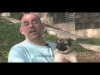 Embedded thumbnail for (Part 2) Steve Brooks – The Heeler