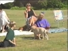 Embedded thumbnail for Keep them Going - Dog Training for Children