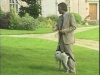 Embedded thumbnail for Loose Leash 3 - Training the Companion Dog 3 – Walking & Heeling
