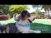 Embedded thumbnail for Garden Party with Juno Maru