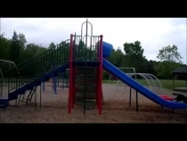 Embedded thumbnail for Nina Dog playing on the slide