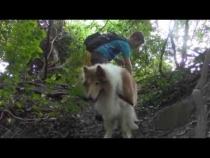 Embedded thumbnail for Adventure Walk