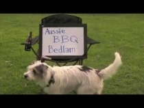 Embedded thumbnail for Aussie BBQ Bedlam