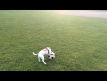 Embedded thumbnail for Lulu practices soccer