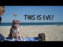 Embedded thumbnail for Summer Fun With Eve!!